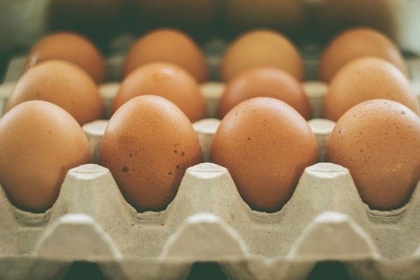 FPG_06-EggsCarton_FeaturedImage